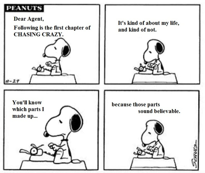Snoopy - the Query I want to send